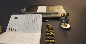 dispensary business plan